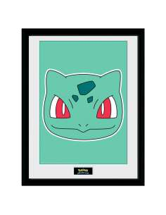 Foto marco Bulbasaur Face Pokemon