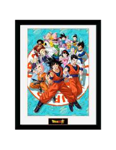 Foto marco Universe Group Dragon Ball Super
