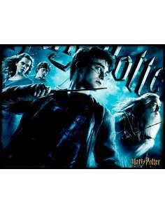Puzzle lenticular Harry Potter 500pzs