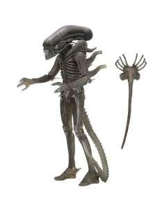 Figura The Alien 40th Anniversary Serie 4 Alien 18cm